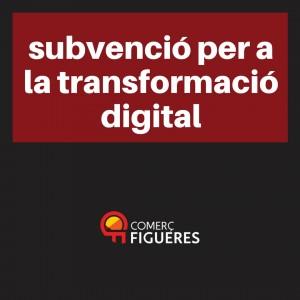 Subvencions per a la transformació digital per a empreses de comerç, serveis, artesania i moda.